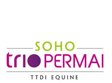SOHO Trio Permai